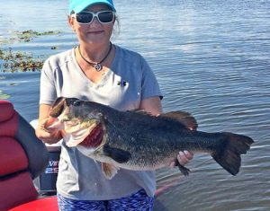 Roland Martin Trophy Bass Guided Fishing