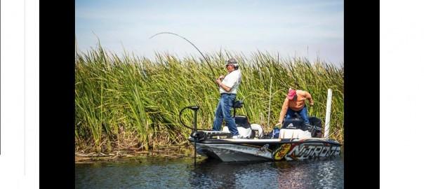 Bass Fishing at Roland Martin Marina